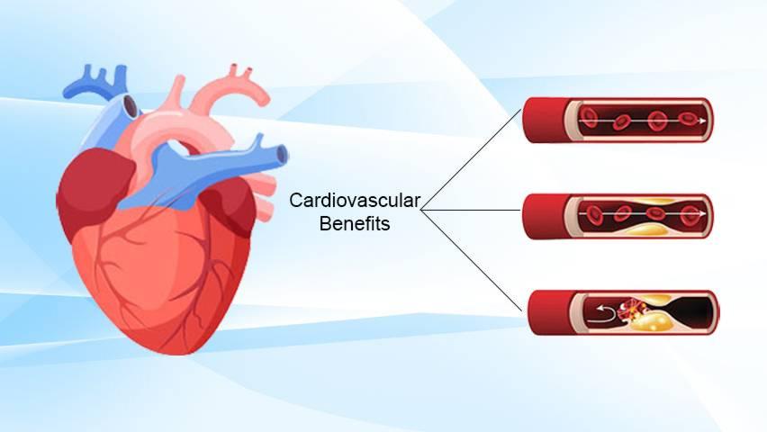 Cardiovascular Benefits